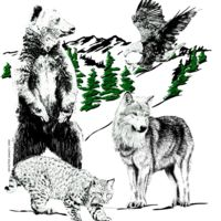 Z91 Mountain Animals Thumbnail