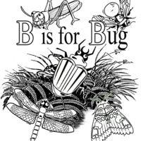 B is for Bug Thumbnail