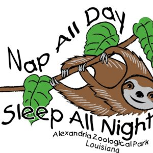 Z528 Sloth Sleep all Day Thumbnail