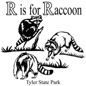 R is for raccoon Thumbnail