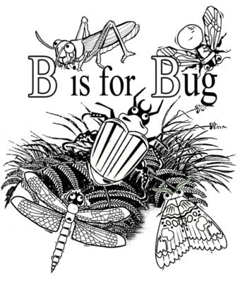 B is for Bug