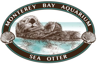 S70 Oval Sea Otter