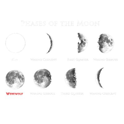 V17 Phases of the moon